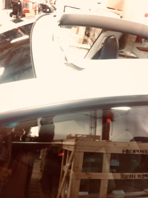Tesla Model Y / οροφή