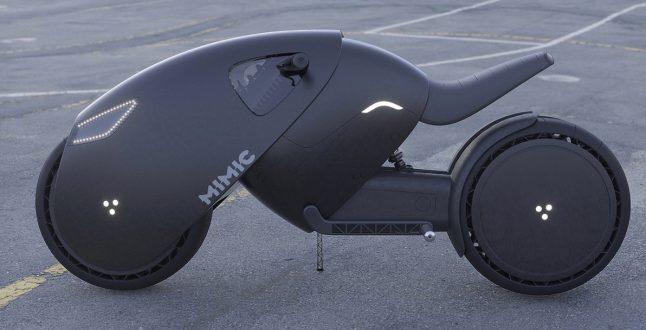 Concept Mimic / Roman Dolzhenko