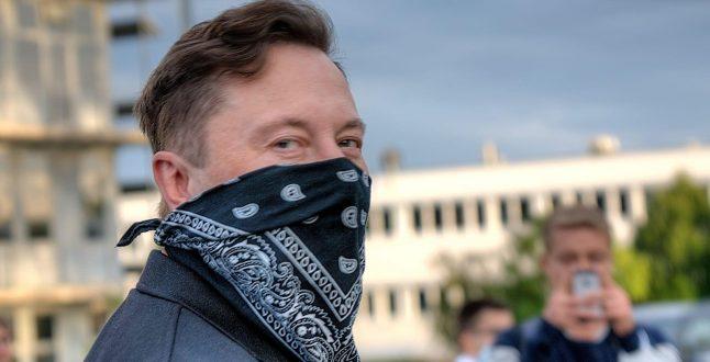 Elon Musk - Germany